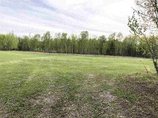 Photo 13: 633 Rge Rd 261 A: Rural Westlock County Rural Land/Vacant Lot for sale : MLS®# E4204995