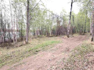 Photo 11: 633 Rge Rd 261 A: Rural Westlock County Rural Land/Vacant Lot for sale : MLS®# E4204995