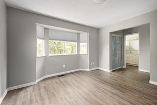 Photo 19: 20487 115A Avenue in Maple Ridge: Southwest Maple Ridge House for sale : MLS®# R2498456