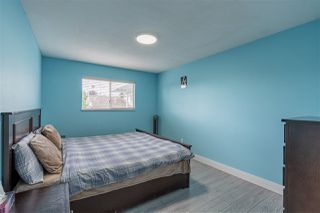 Photo 19: 3135 TOWNLINE Road in Abbotsford: Abbotsford West House for sale : MLS®# R2508586