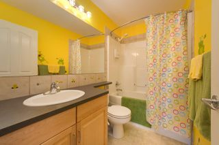Photo 19: 4043 33 Street in Edmonton: Zone 30 House for sale : MLS®# E4173602