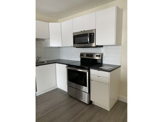 Photo 2: 8604 Gateway Boulevard NW in Edmonton: Condo for rent
