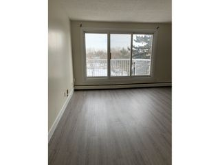 Photo 5: 8604 Gateway Boulevard NW in Edmonton: Condo for rent