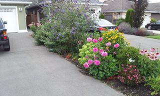 Photo 2: 11155 6TH AVENUE in Richmond: Steveston Village House for sale : MLS®# R2424318
