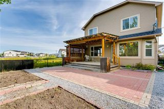 Photo 18: 250 MARTHA'S Manor NE in Calgary: Martindale Detached for sale : MLS®# C4267233