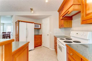 Photo 36: 250 MARTHA'S Manor NE in Calgary: Martindale Detached for sale : MLS®# C4267233