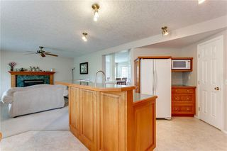 Photo 35: 250 MARTHA'S Manor NE in Calgary: Martindale Detached for sale : MLS®# C4267233
