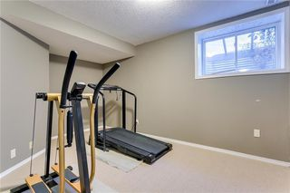 Photo 22: 250 MARTHA'S Manor NE in Calgary: Martindale Detached for sale : MLS®# C4267233