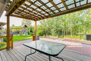Photo 40: 250 MARTHA'S Manor NE in Calgary: Martindale Detached for sale : MLS®# C4267233