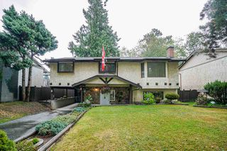 Photo 1: 7324 TODD Crescent in Surrey: East Newton House for sale : MLS®# R2404173