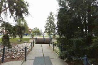 Photo 16: 306 5730 RIVERBEND Road in Edmonton: Zone 14 Condo for sale : MLS®# E4181124