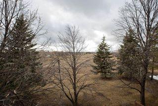 Photo 29: 3 183 Hamilton Avenue in Winnipeg: Heritage Park Condominium for sale (5H)  : MLS®# 202009301