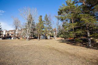 Photo 46: 3 183 Hamilton Avenue in Winnipeg: Heritage Park Condominium for sale (5H)  : MLS®# 202009301