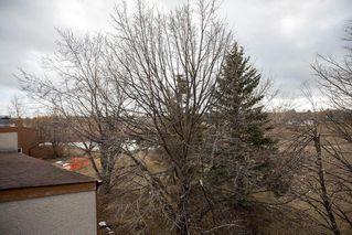 Photo 30: 3 183 Hamilton Avenue in Winnipeg: Heritage Park Condominium for sale (5H)  : MLS®# 202009301