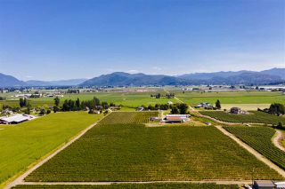 Photo 8: 5235 GLENMORE Road in Abbotsford: Matsqui House for sale : MLS®# R2486683