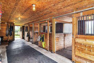 Photo 21: 26524 100 Avenue in Maple Ridge: Thornhill MR House for sale : MLS®# R2502037
