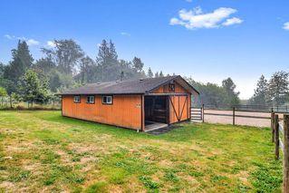 Photo 20: 26524 100 Avenue in Maple Ridge: Thornhill MR House for sale : MLS®# R2502037