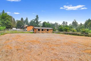 Photo 22: 26524 100 Avenue in Maple Ridge: Thornhill MR House for sale : MLS®# R2502037