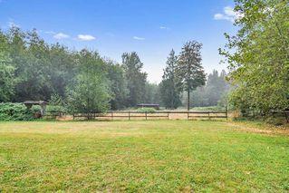 Photo 23: 26524 100 Avenue in Maple Ridge: Thornhill MR House for sale : MLS®# R2502037