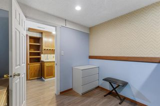 Photo 21: 23 Erin Woods Place SE in Calgary: Erin Woods Detached for sale : MLS®# A1043975