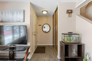 Photo 3: 23 Erin Woods Place SE in Calgary: Erin Woods Detached for sale : MLS®# A1043975