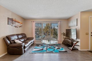 Photo 6: 23 Erin Woods Place SE in Calgary: Erin Woods Detached for sale : MLS®# A1043975