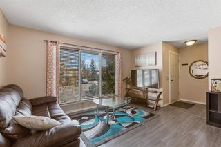 Photo 5: 23 Erin Woods Place SE in Calgary: Erin Woods Detached for sale : MLS®# A1043975