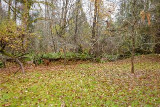 Photo 39: 8591 Lory Rd in : CV Merville Black Creek House for sale (Comox Valley)  : MLS®# 860399