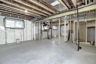 Photo 30: 10034 142 Street in Edmonton: Zone 21 House for sale : MLS®# E4203312