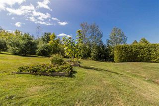 Photo 29: 278 Allison Coldwell Road in Gaspereau: 404-Kings County Residential for sale (Annapolis Valley)  : MLS®# 202021285