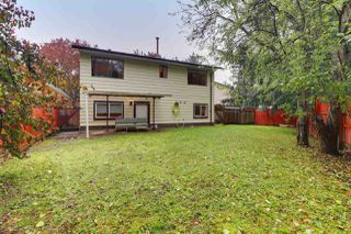 """Photo 14: 12864 67B Avenue in Surrey: West Newton House for sale in """"Newton"""" : MLS®# R2511069"""
