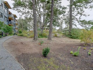 Photo 22: 404 3912 Carey Rd in VICTORIA: SW Tillicum Condo Apartment for sale (Saanich West)  : MLS®# 824610