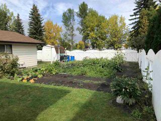 Photo 23: 146 Northwood Crescent: Wetaskiwin House for sale : MLS®# E4174121