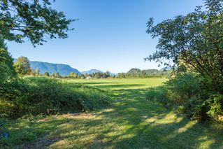 Photo 13: 19558 FENTON ROAD in PITT MEADOWS: Home for sale : MLS®# V1083507