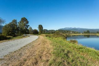 Photo 16: 19558 FENTON ROAD in PITT MEADOWS: Home for sale : MLS®# V1083507