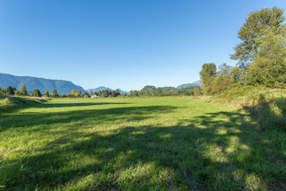 Photo 14: 19558 FENTON ROAD in PITT MEADOWS: Home for sale : MLS®# V1083507