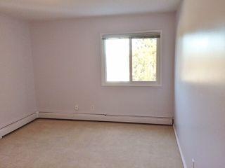 Photo 12: 301 5730 Riverbend Road in Edmonton: Zone 14 Condo for sale : MLS®# E4187055
