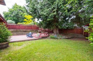 Photo 23: 9389 210 Street in Langley: Walnut Grove House for sale : MLS®# R2467023