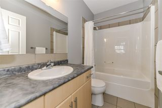 Photo 16: 8903 210 Street in Edmonton: Zone 58 House for sale : MLS®# E4169013