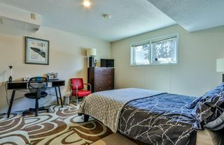 Photo 23: 158 Coyote Way: Canmore Detached for sale : MLS®# C4294362