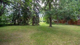 Photo 5: 5815 109 Street in Edmonton: Zone 15 House for sale : MLS®# E4209004