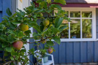 Photo 19: 1779 ASTRA Rd in : CV Comox Peninsula House for sale (Comox Valley)  : MLS®# 857727