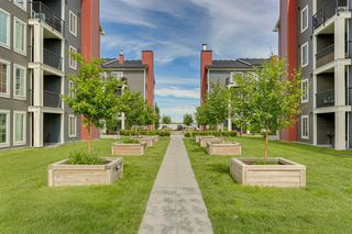 Photo 21: 6303 755 Copperpond Boulevard SE in Calgary: Copperfield Apartment for sale : MLS®# A1053857