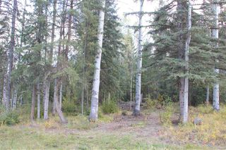 Photo 2: LOT 49 WOLFE ROAD in 100 Mile House: Horse Lake Land Only for sale (100 Mile House (Zone 10))  : MLS®# R2308751