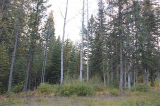 Photo 6: LOT 49 WOLFE ROAD in 100 Mile House: Horse Lake Land Only for sale (100 Mile House (Zone 10))  : MLS®# R2308751