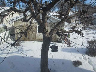 Photo 19: 12133 47 Street in Edmonton: Zone 23 House for sale : MLS®# E4190198