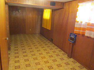 Photo 13: 12133 47 Street in Edmonton: Zone 23 House for sale : MLS®# E4190198