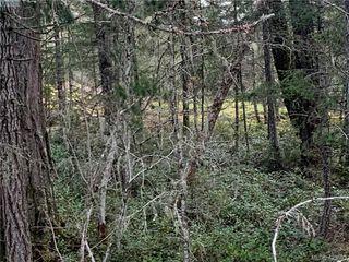 Photo 16: 2740 Phillips Road in SOOKE: Sk Phillips North Land for sale (Sooke)  : MLS®# 423893