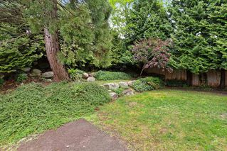 """Photo 19: 2567 FUCHSIA Place in Coquitlam: Summitt View House for sale in """"Summit View"""" : MLS®# R2456213"""