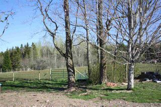 Photo 6: 426 Scotsburn Road in West Branch: 108-Rural Pictou County Residential for sale (Northern Region)  : MLS®# 202009744